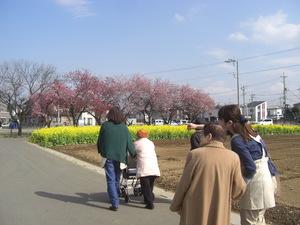 気候が良い日は歩行訓練をかねて近隣へ散歩に出かけています